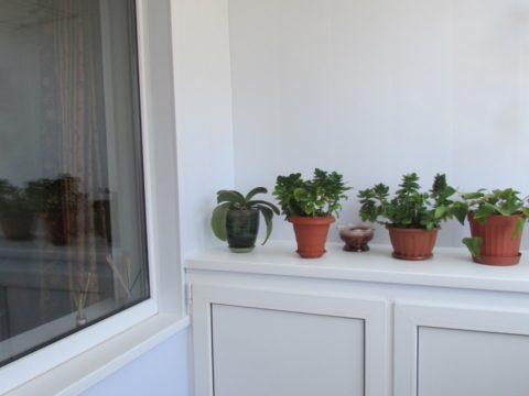 balkon24